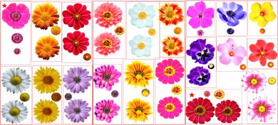 お花の型紙見本