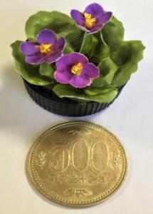 500円玉と大きさを比較